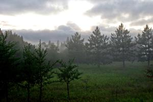 Foggy sunset at the entrance to Itasca State Park