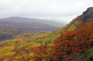 The view atop Brockway Mountain in the rain during peak colors was awesome!